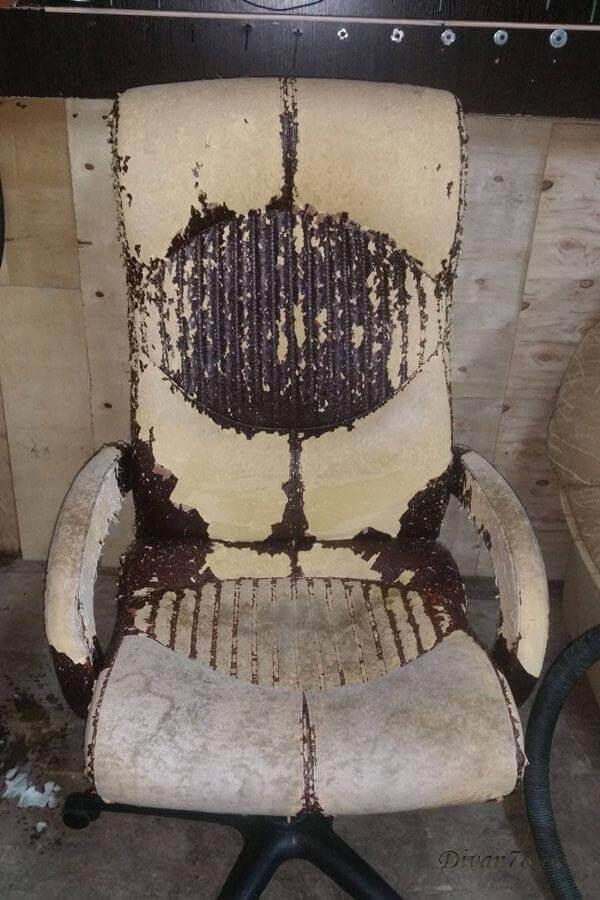кресло кожаное до перетяжки